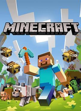 Minecraft game specification