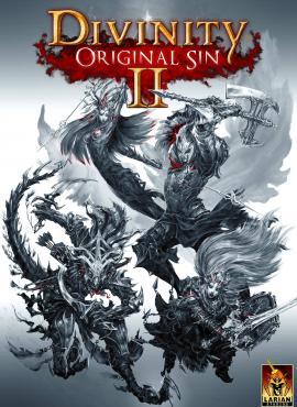 Divinity: Original Sin II game specification