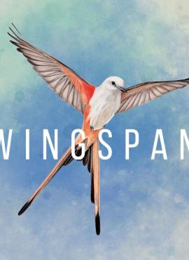 Wingspan game specification